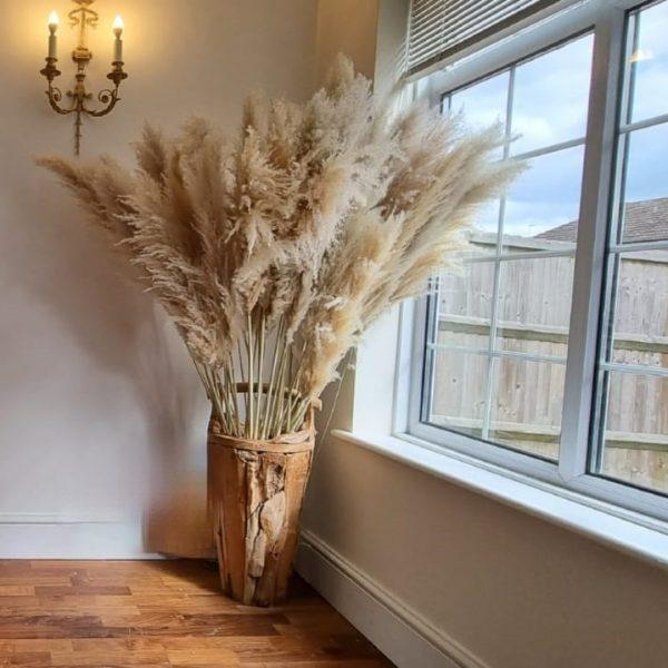Beige Caramel Pampas Grass Large & Fluffy